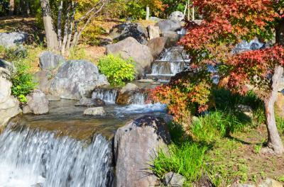 하나하쿠기념공원츠루미녹지, 가을 11