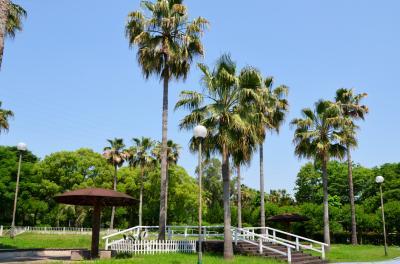 하나하쿠기념공원츠루미녹지, 여름 03