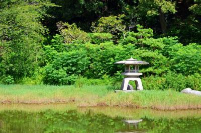 하나하쿠기념공원츠루미녹지, 여름 07