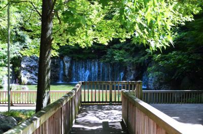 하나하쿠기념공원츠루미녹지, 여름 01