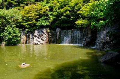 하나하쿠기념공원츠루미녹지 04