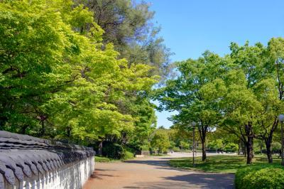 하나하쿠기념공원츠루미녹지 06