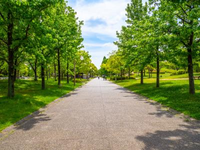 하나하쿠기념공원츠루미녹지 10
