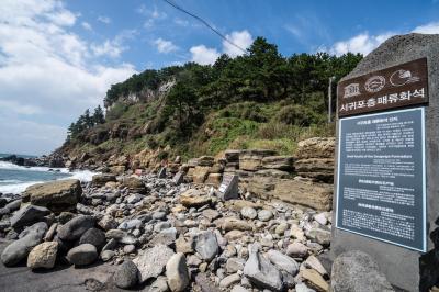 제주 서귀포층 패류화석 산지