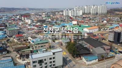 진천군 덕산읍