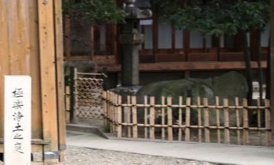 일명 극락정토 정원 01