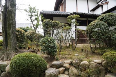 시텐노지-혼보우 정원 11