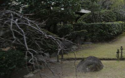 시텐노지-혼보우 정원 14