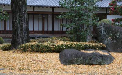 시텐노지-혼보우 정원 07