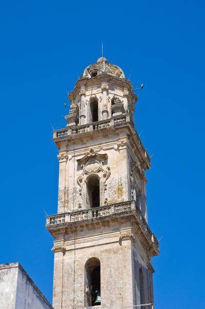 스테르나티아 가정교회 타워 09