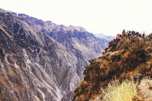 깊은 계곡 콜카 캐년에 나타나는 전설의 새 콘도르.
