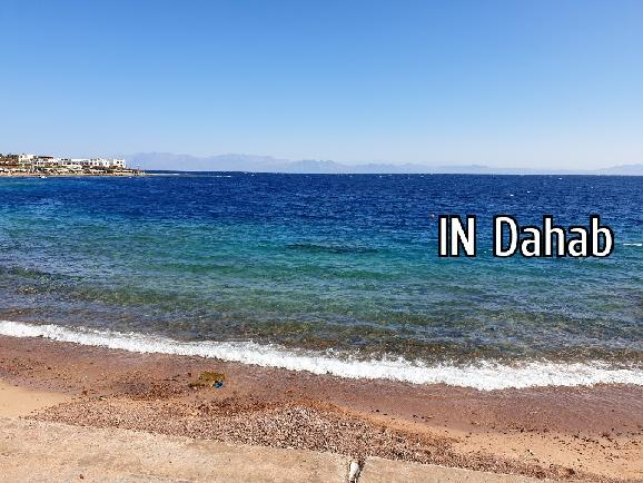 IN Dahab