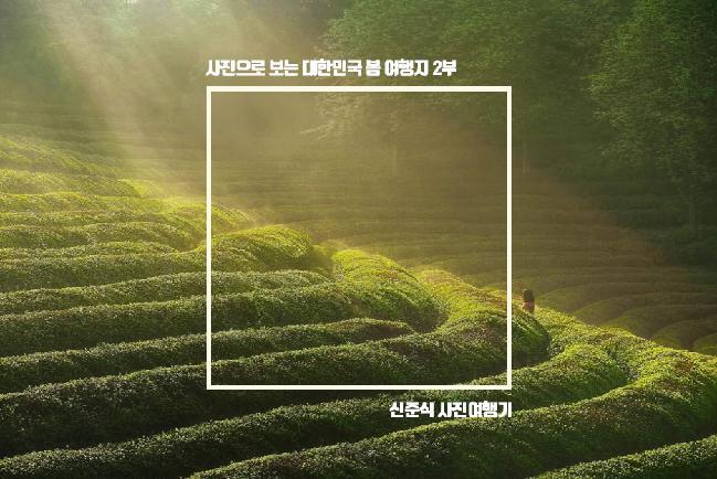사진으로 보는 대한민국 봄 여행지 2부