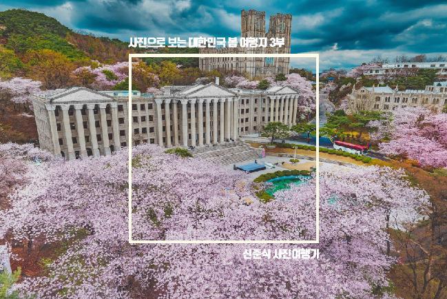사진으로 보는 대한민국 봄 여행지 3부