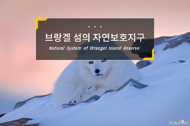 브랑겔 섬의 자연보호지구