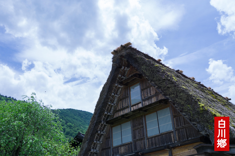#3. 요정이 숨어있는 마을 시라카와고