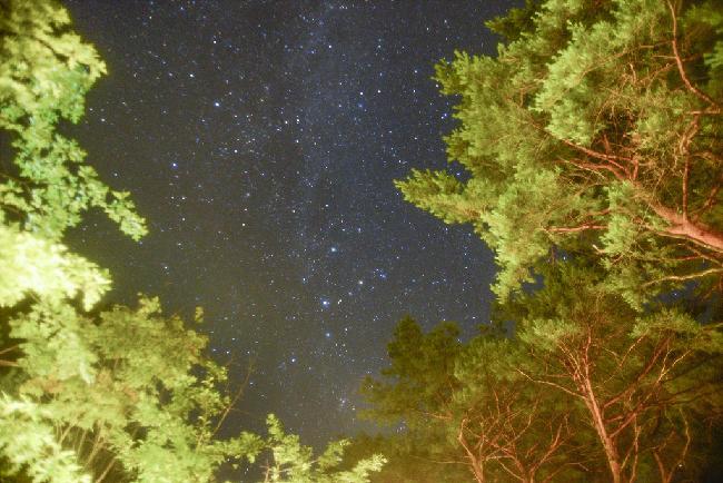 별빛이 내리는 숲, 제천 백운면 둘레길