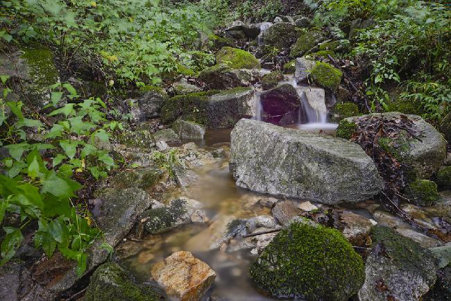 숲의 느림 속, 제천 리솜포레스트와 주론산