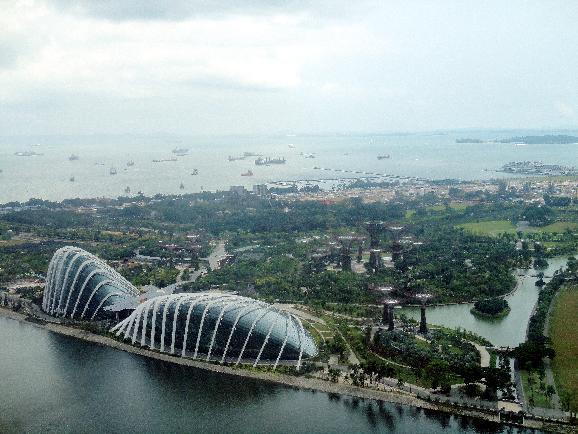 싱가포르 보타닉 가든 / 대관람차 플라이어