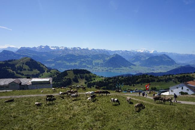 스위스를 품은 리기산(Rigi Mountain)
