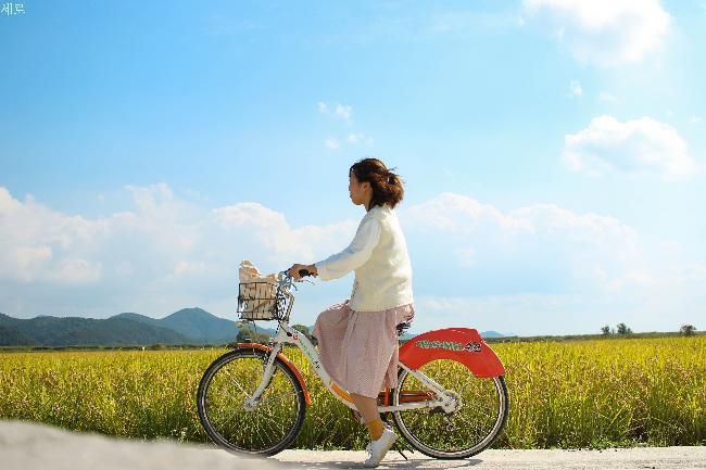 선선한 가을에 바람쐬러 가기 좋은 국내 여행지