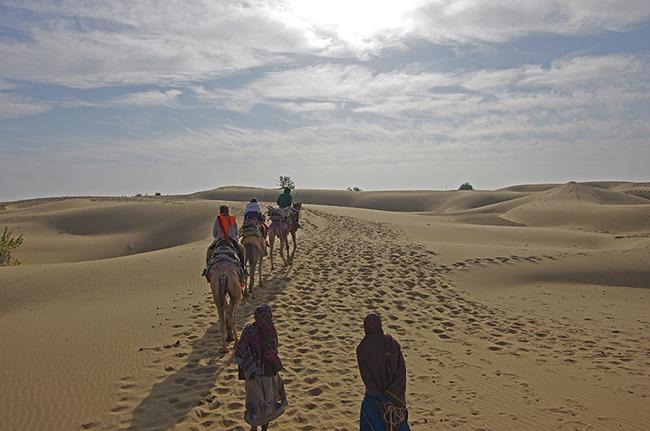시작부터 끝까지 예상과는 너무 다르다. 인도 사막!
