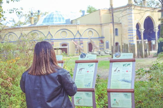 2. 뜻밖의 힐링; 베를린 동물원 TMI
