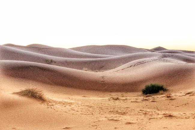 마라케시에서 사하라사막으로(하)