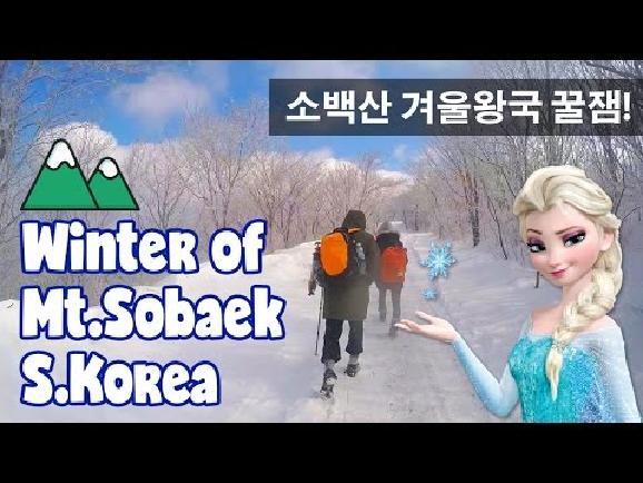 한국판 겨울왕국 소백산의 겨울로 들어가보자!