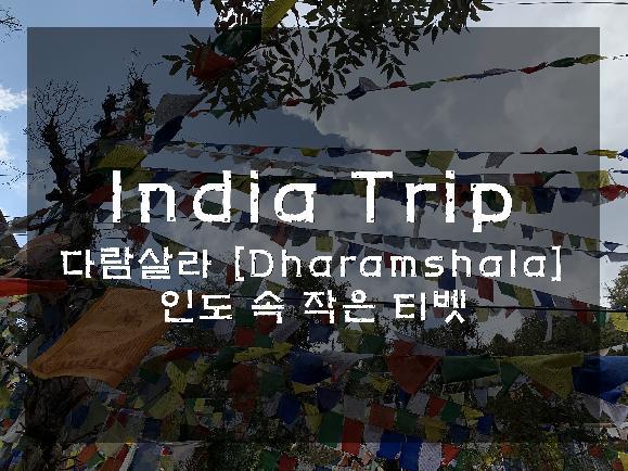 인도 속 작은 티벳, 다람살라에 살다(1).