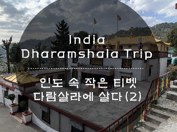 인도 속 작은 티벳, 다람살라에 살다(2)