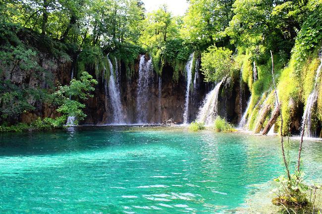 여름의 싱그러움이 가득한 크로아티아
