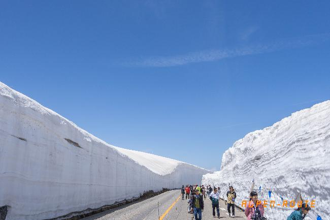 #4. 하얀 설벽의 세상, 알펜루트를 가다