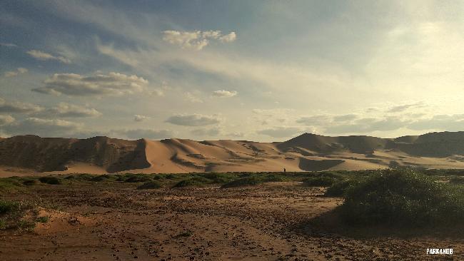 적응할 수 있어! _몽골 고비사막