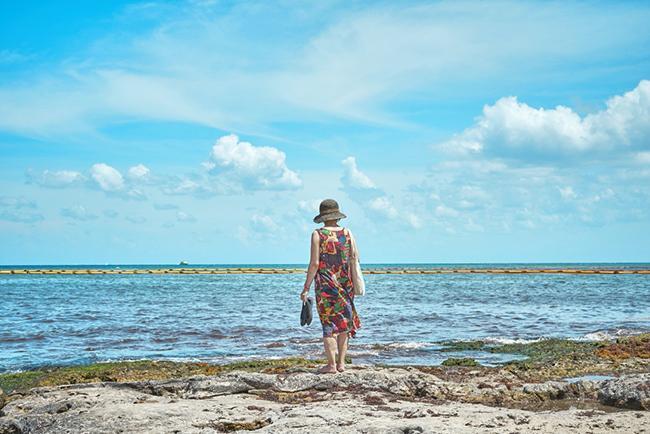 배낭여행자가 칸쿤을 여행하는 법. 플랴에 델 카르멘