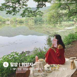 4. 밀양 위양지  TIP 연못 주변을 따라 산책하다가 이팝나무 보이면 사진 찍기  (사진 출처 인스타그램 @luv.rumi_)