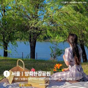 1. 서울 양화한강공원  TIP '보통의 낭만'이나 '선유기지'에서 피크닉 세트 대여할 것  (사진 출처 인스타그램 @ttu_bing)