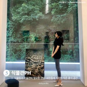 3. 식물관PH  식물원과 미술관의 절묘한 만남! 회현동에 자리한 작은 휴식 공간  (사진 출처|인스타그램 @_chicharm)