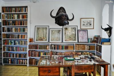 ▲핀카 비히아(Finca Vigia)  스페인어로 '전망 좋은 집'이라는 뜻을 가진 핀카 비히아는  아바나에서 12km 정도 떨어져 있는, 헤밍웨이의 쿠바 저택입니다.  오늘날에는 헤밍웨이의 가장 많은 유품을 소장한 박물관으로 사랑받습니다.