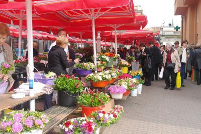 ▲계단 아래편에 자리한 빨간색 파라솔 무리는 자그레브 꽃 시장이다.  현지인들을 상대로 한 다품종 소량 판매에다 노점 개수도 많지 않아  오전 10시나 11시 무렵이면 모두 판매되고 정리하는 분위기이다.