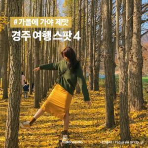 #가을에 가야 제맛  경주 여행 스팟 4  (사진 출처|인스타그램 @http._.jh)