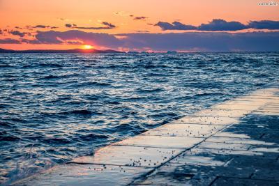도시가 워낙 아담해서 반나절이면 관광하기에 충분하다. 다만 오전보다 오후에 관광해야만 자다르의 아름다움을 제대로 경험할 수 있다. 노을지는 바다의 모습을 절대 놓쳐선 안되기 때문이다.