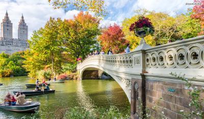 ▲뉴욕을 대표하는 도심 공원, 센트럴파크.  가장 아름다운 다리로 불리는 '보우 브릿지(Bow Bridge)'는  <카페 소사이어티>, <스파이더맨3> 등 수많은 영화 속에 등장했다.