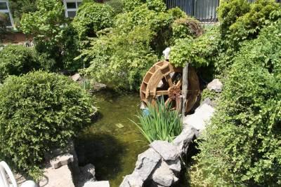 서울역삼초등학교 연못 06