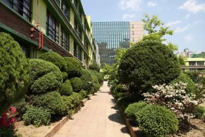 서울역삼초등학교 08