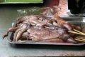 노호탄해양공원 오징어구이