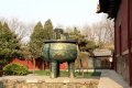 타이안 태묘