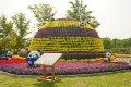 인천 드림파크 국화축제