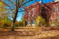 다칭 도시공원의 가을풍경