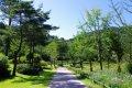 강원산소길 홍천수타사생태숲길 코스 - 공작산생태숲